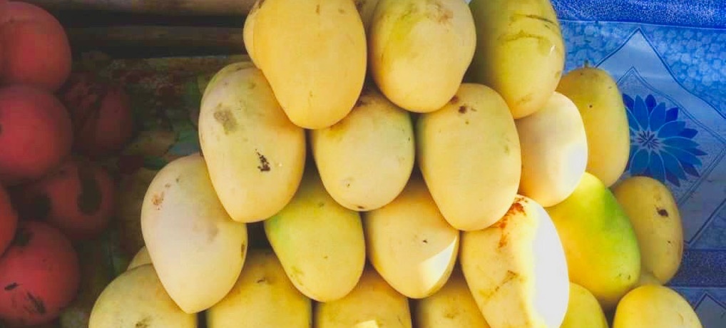 All-You-Can-Eat Mango!